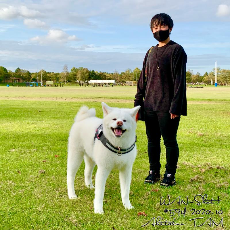 秋田犬TAM 野幌総合運動公園